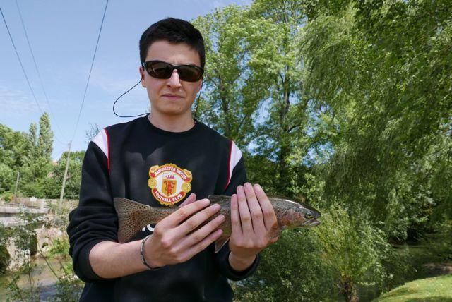 Sacha truite arc 35 cm