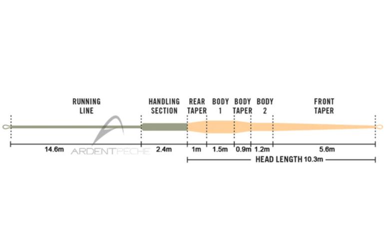 Profil et longueur de la tête Rio Intouch Single Hand Spey