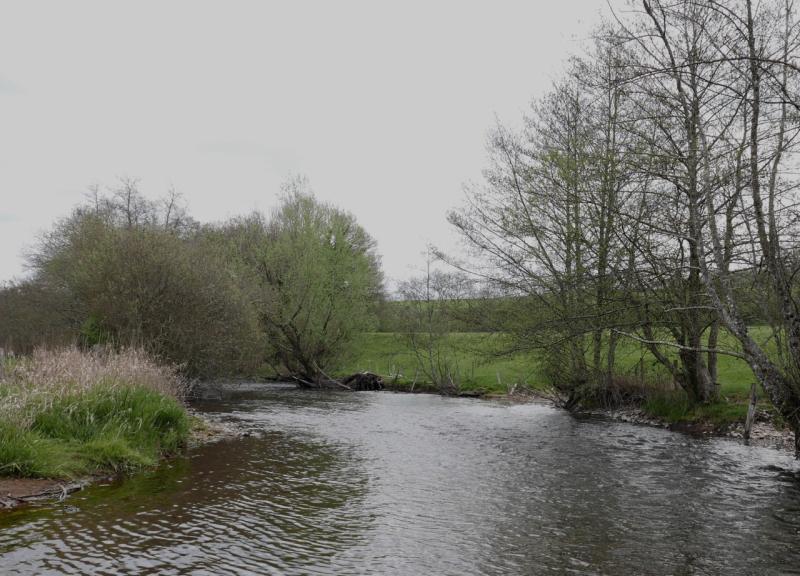 Yonne Morvan