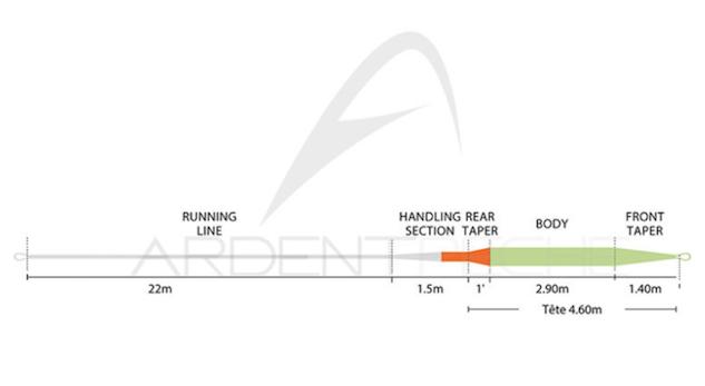 Profil et longueur de la tête Rio Intouch Trout Spey Skagit