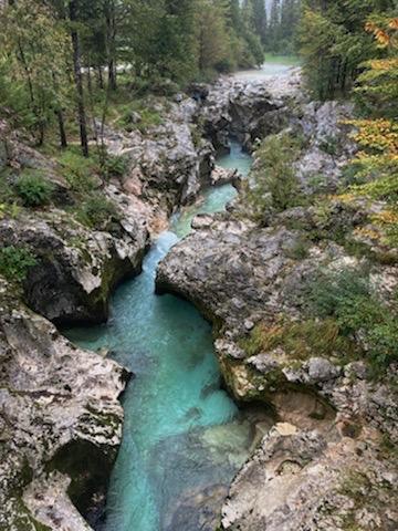 4 Paysage rivière principale